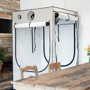 Homebox Ambient Q Növény Sátor