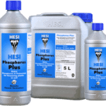 Hesi Phosphorus
